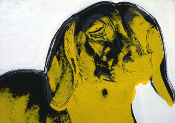 Andy Warhol bassotto
